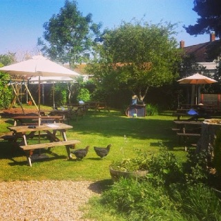family friendly pub new forest