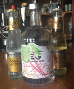 Rhubarb and Ginger Liqueur Edinburgh Gins - The Railway Craft Gin Pub