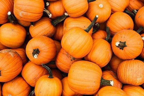 Taste of HalloweenParty